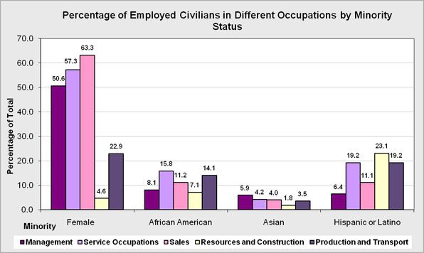 The percentage of employed civilians in different occupations by minority status.